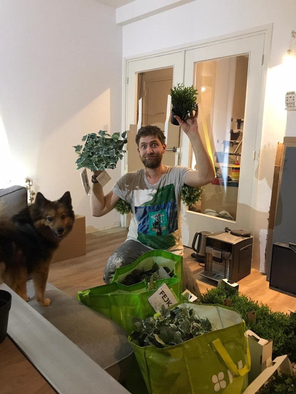 https://lumatronix.nl/FOK/VerticalGarden_Plantage.jpg