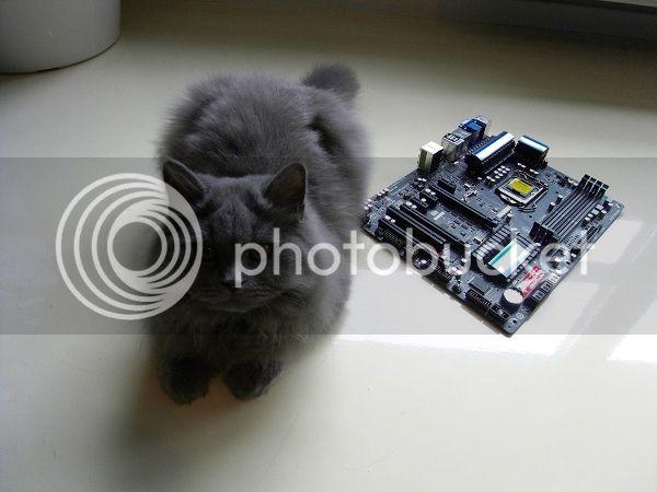 http://i1187.photobucket.com/albums/z382/alain-s/Bel%20Air/SDC11692.jpg