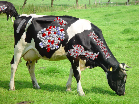 http://linuxminded.nl/tmp/folding-cow.png