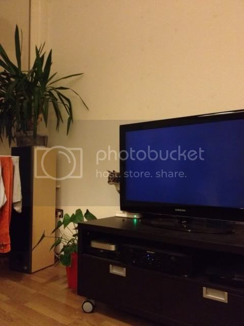 http://i166.photobucket.com/albums/u91/sjieto/e25058cf.jpg