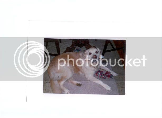 http://i659.photobucket.com/albums/uu320/Freakertje/scan0002-1.jpg