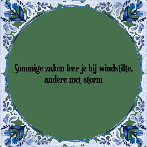 https://www.tegelspreuken.nl/i-spreuken/xl/sommige-zaken-leer-je-bij-windstilte-andere-met-storm-spreuk.png