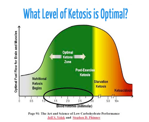 https://files.ketodietapp.com/Blog/files/2014/03/ketosistix_graph.jpg