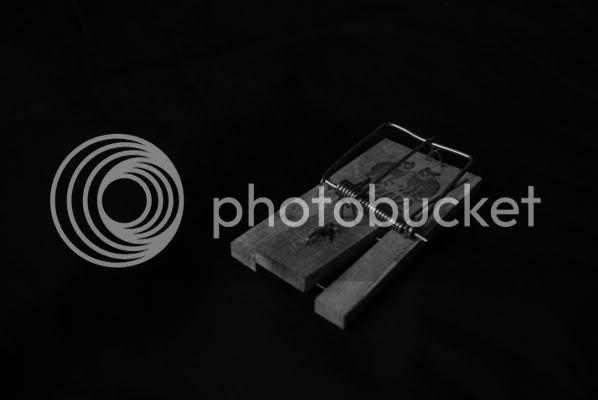 http://i165.photobucket.com/albums/u53/FGriffin_img/MuisvalThumb.jpg