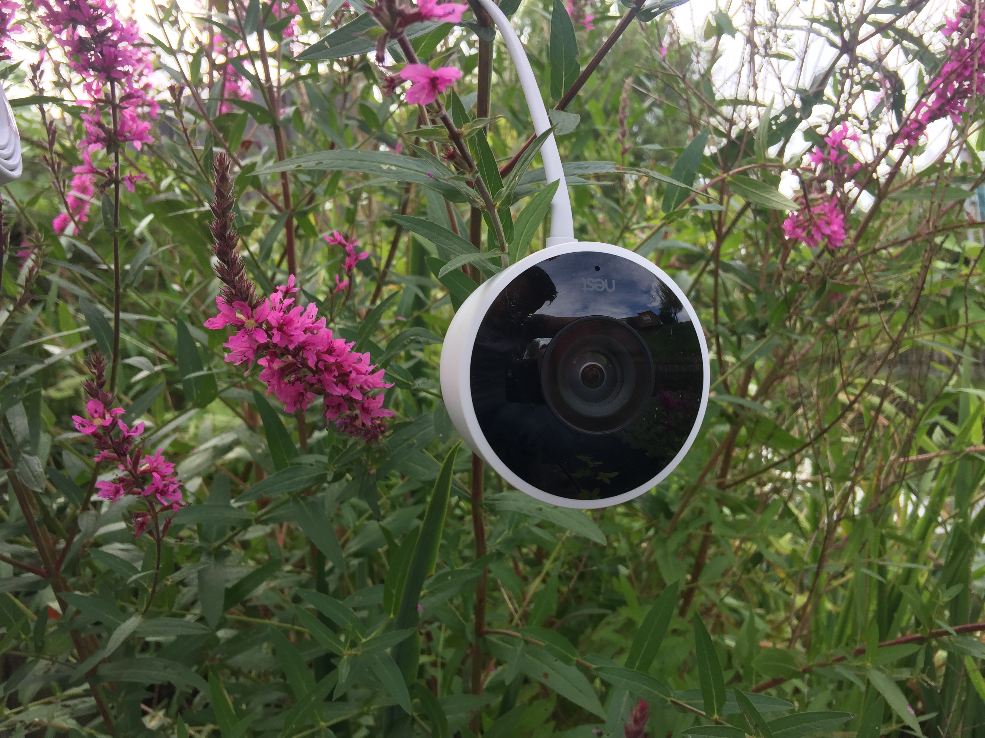 http://techgaming.nl/image_uploads/reviews/Nestcam-outdoor/low2.JPG