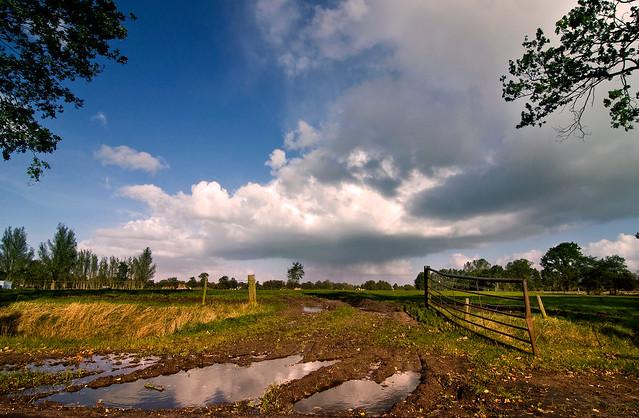 http://farm2.static.flickr.com/1223/5114050757_5a46e422a0_z.jpg