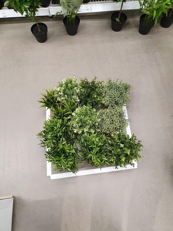 https://lumatronix.nl/FOK/VerticalGarden_Plantjes_uitmeten_Ikea.jpg