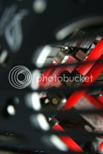 http://i759.photobucket.com/albums/xx233/kier1976/NEW/Parvum/Finished/DSC02361.jpg