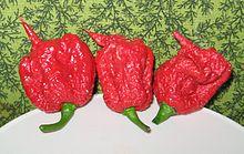 https://upload.wikimedia.org/wikipedia/commons/thumb/0/03/Carolina_Reaper_pepper_pods.jpg/220px-Carolina_Reaper_pepper_pods.jpg