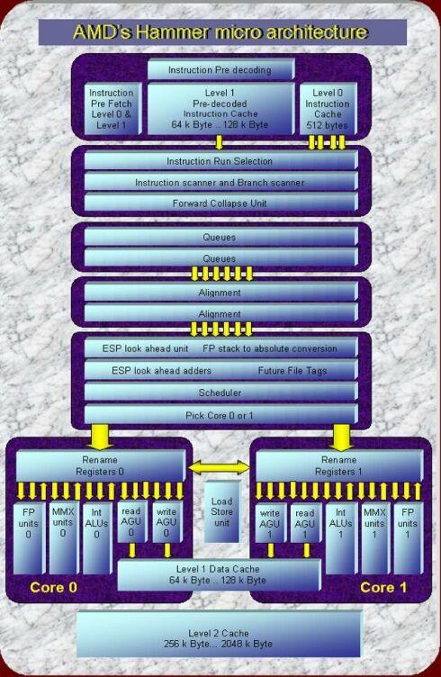 Schema AMD's Hammer micro-architectuur