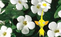 Nintendo bloem
