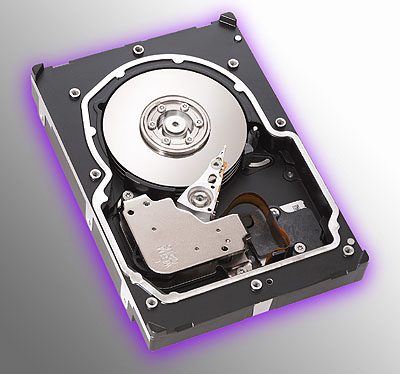 Seagate Cheetah 15K.3 perspic
