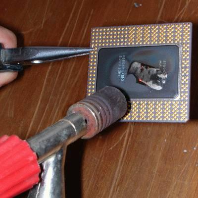 Tweakers.net Kookcursus 7: Pentium fileren