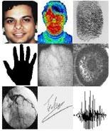 Biometrie (overzicht voorbeelden)