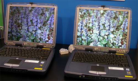 LTPS LCD naast normaal LCD