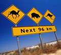 Australische borden
