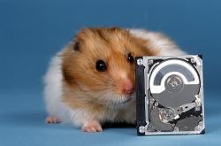 Hamster met Microdrive