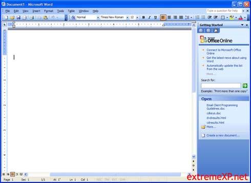 Microsoft Office 2003: Word (klein)