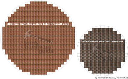 300mm Prescott-wafer naast 200mm Opteron-wafer (klein)