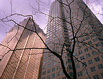 Royal Bank of Canada Toronto