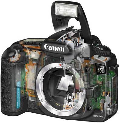 Canon EOS 20D inside