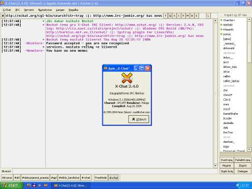 SilvereX X-Chat for Windows screenshot (klein)