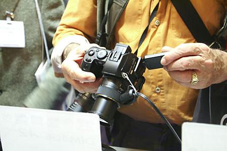 Konica Minolta Dynax 7D samples - PICT0178