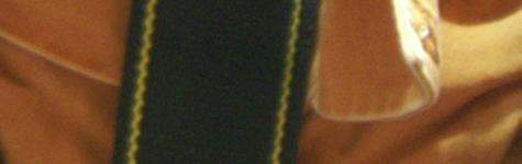 Konica Minolta Dynax 7D ISO crops - ISO 400