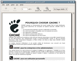 Gnome 2.12 - Evince (klein)