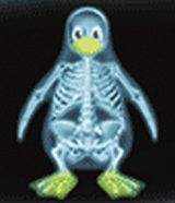 Linux X-ray