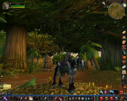 World of Warcraft (klein)