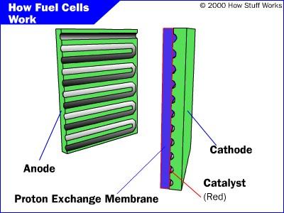 Brandstofcel: schematische weergave van een PEMFC-cell