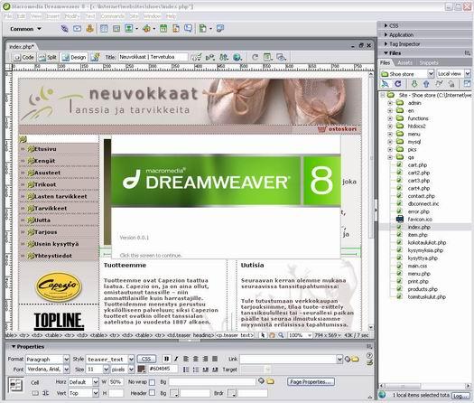 Macromedia Dreamweaver 8.01 screenshot (resized)