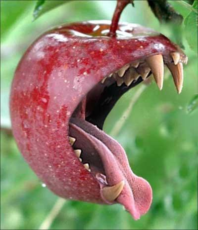 Agressief en uitgehongerd ogend appeltje