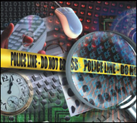 FBI Computer Crime Survey