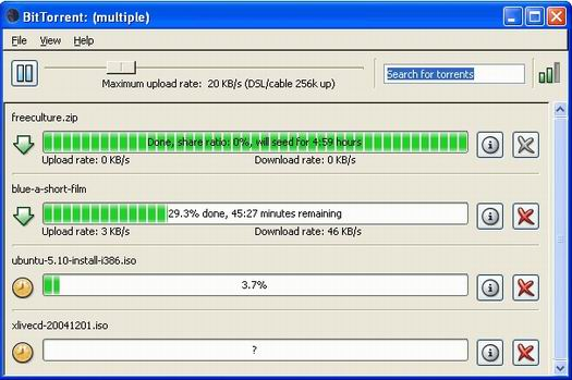 BitTorrent 4.4 screenshot (resized)