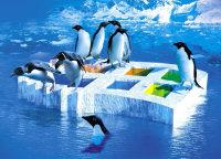 Pinguins op Windows-ijsschots