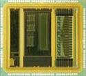 Cell-processor