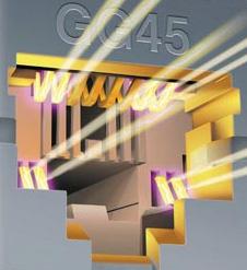 GG45-plug (10Gbps-mode)