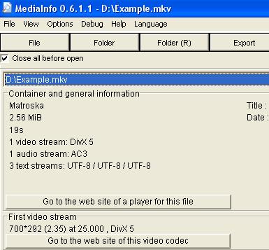 MediaInfo 0.6.1.1 (crop)