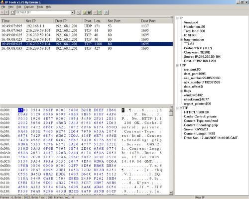 IP Sniffer (klein)