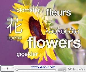 Voorbeeldcommercial Google AdWords Video
