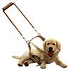 Blindegeleidehond