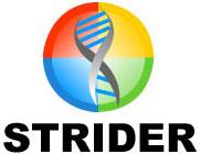 Microsoft Strider Search Defender-logo