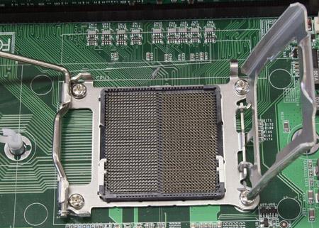 Socket F 450px breed