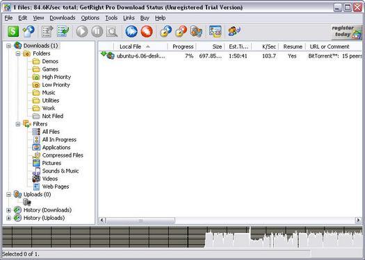 GetRight Pro 6.0b screenshot (resized)