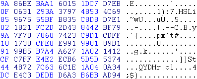 Geëncodeerde inhoud van ICMP-pakket (uitsnede)