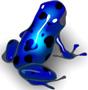 Azureus logo (90 pix)