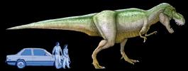 Tyrannosaurus en auto op zelfde schaal