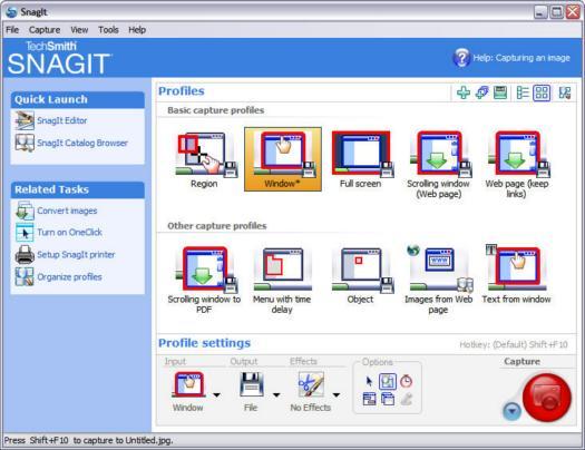SnagIt 8.2.0 screenshot (resized)